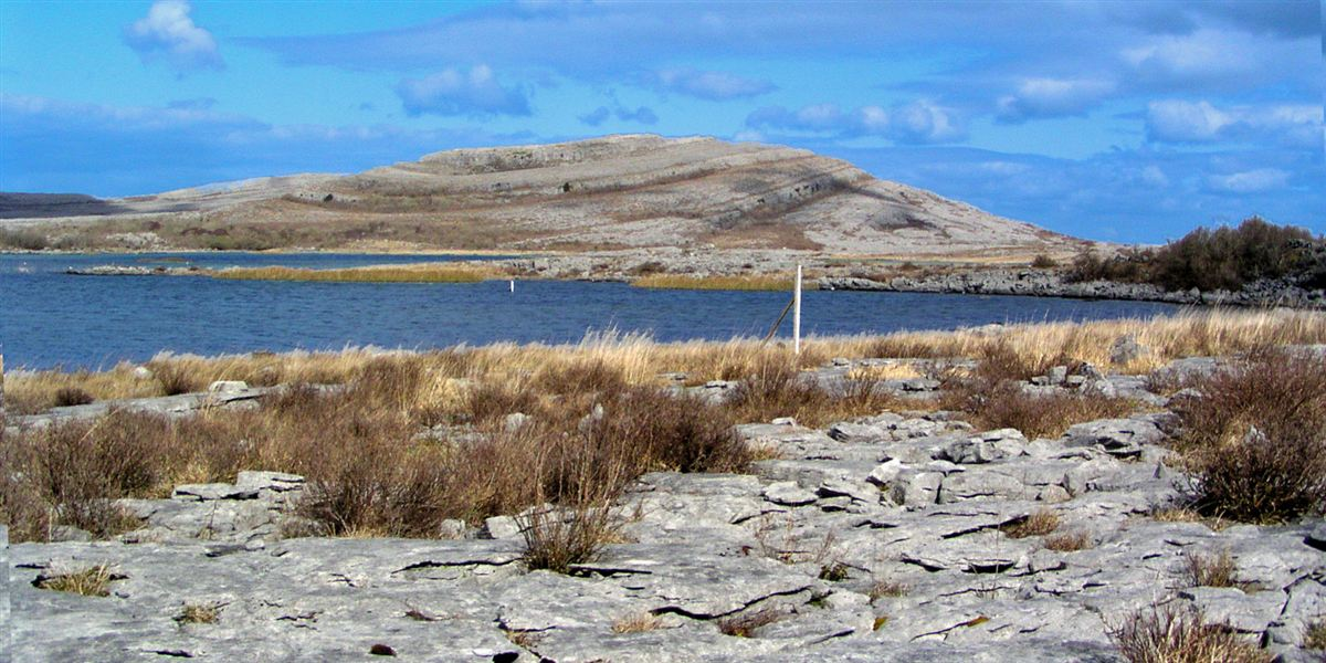 Top Things to do in The Burren Irelands