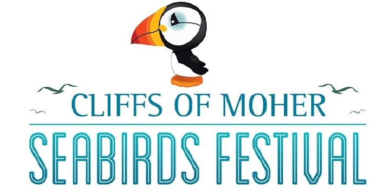 Sea Bird Festival web